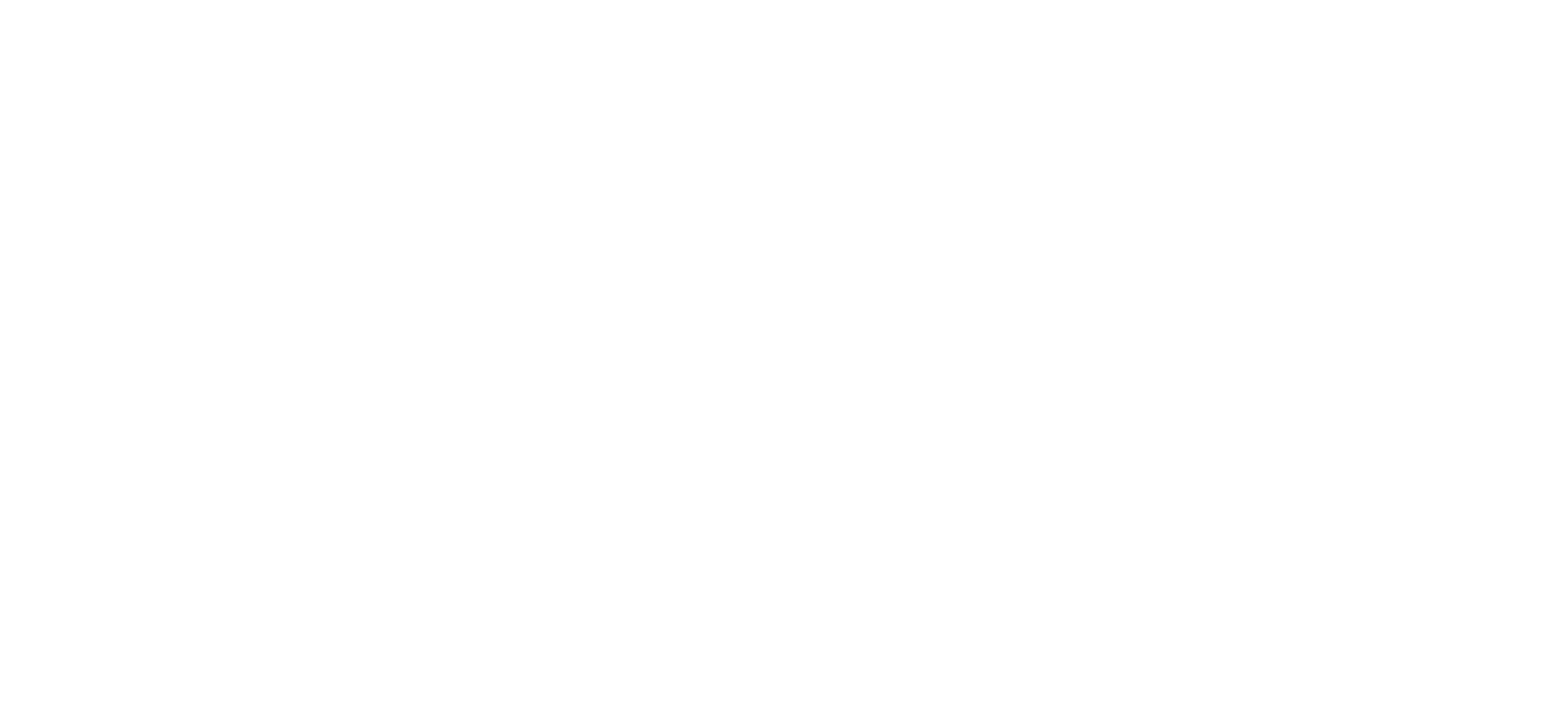 evolholdings footer.png